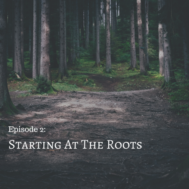 Starting At The Roots
